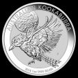 Oncia Australia Kookaburra 2018